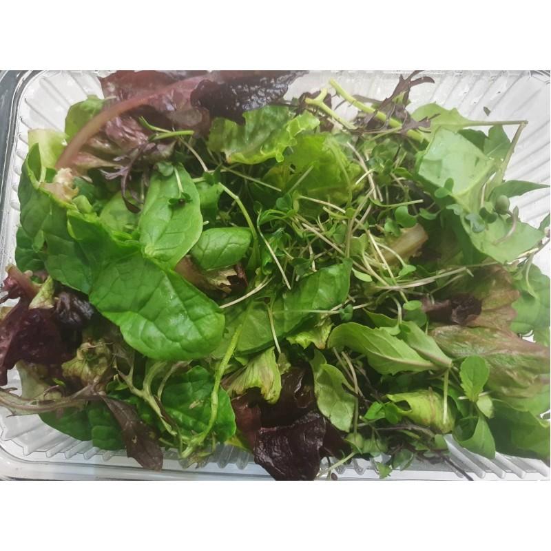 Βιολογική Ανοιξιάτικη σαλάτα microgreens (Spring Mix) 180-220gr