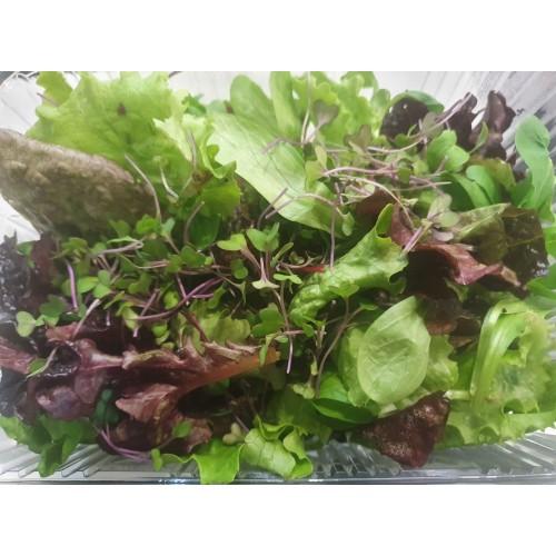 Βιολογική σαλάτα Ουράνιο τόξο microgreens (Rainbow Mix) 180-200gr