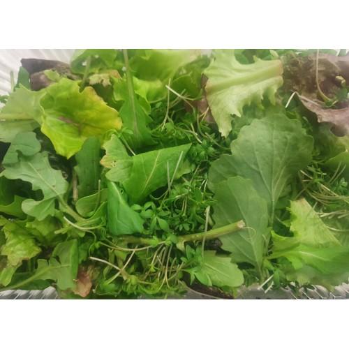 Βιολογική Ασιατική σαλάτα microgreens (Asian Mix) 180-200gr